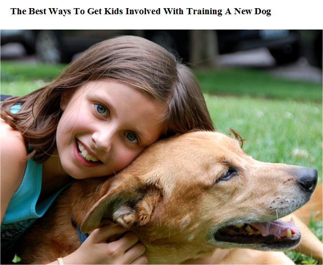 Best Way To Get Kids Involved In Training A Dog